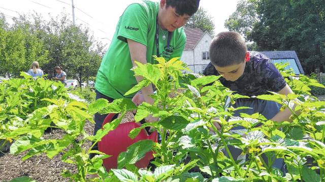 SAFY Outreach Coordinator Heather Hatcher, left, and Russell Clark, 12, tend to one of the raised garden beds at the Lima-Allen County Neighborhoods in Partnership Community Garden on West Spring Street.