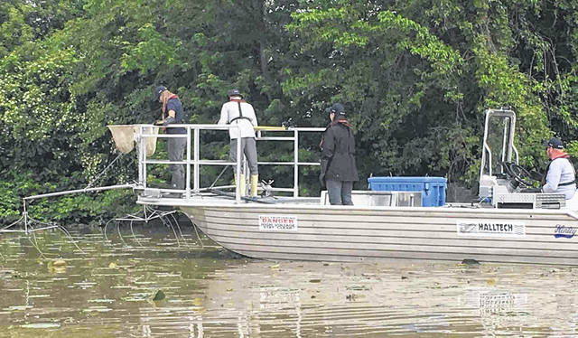 """An electrofishing boat from the Department of Fish and Oceans in Canada attempts to herd fish into a Trammel net and then """"shock"""" fish to the surface for inspection during a grass carp research project on the Sandusky River."""