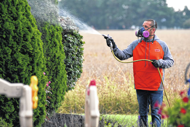 Craig Ruhe of Tri-State Pest Solutions sprays around the exterior of a home in Ottawa.
