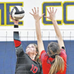 LCC, Leipsic advance to district finals