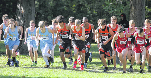 Bath, Elida and Van Wert runners jockey for position during the start of Saturday's Ottawa district Division II boys race.