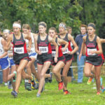 Cross country: Van Wert, Lincolnview boys,Minster girls all defend district titles.