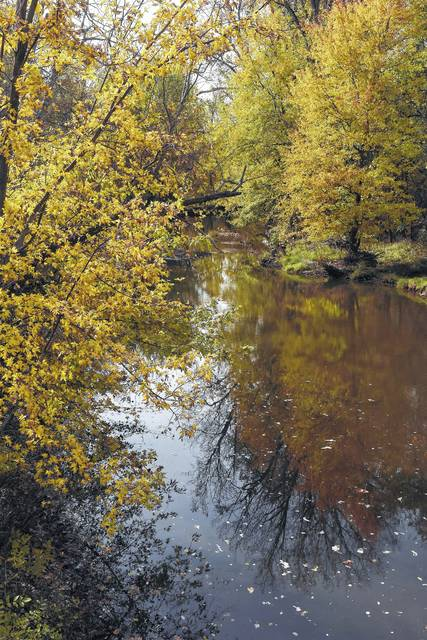 Fall colors reflect off the Ottawa River along Fetter Road on Monday.  Craig J. Orosz | The Lima News