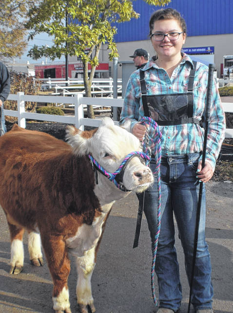 Hope London, 16, from Bowling Green, Ohio showed her Miniature Hereford, Yoda, at the Heart of it All cattle show Sunday at the Allen County Fairgrounds.