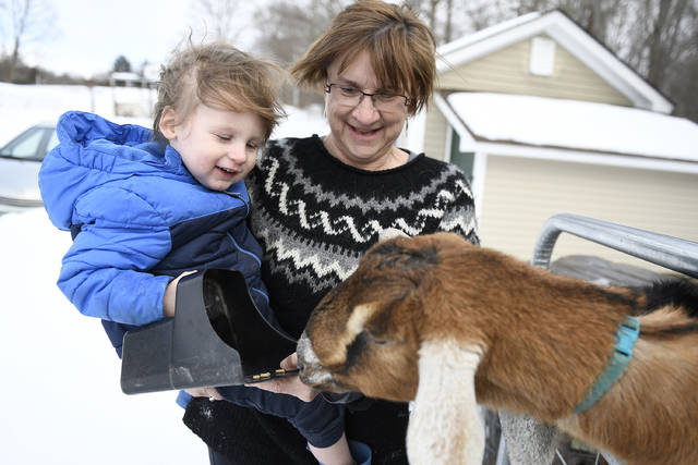 Sally Stanton, right, holds her grandson Murphy Drzewianowski as he feeds Lincoln the goat in Fair Haven, Vt. The 3-year-old Nubian goat is poised to become the first honorary pet mayor of the small Vermont town of Fair Haven.  (/The Rutland Herald via AP)