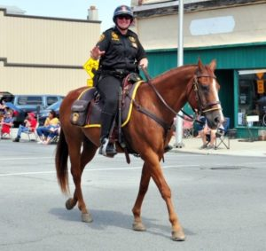 Jefferson Awards: Sara Feldner takes passion for students to mounted patrol