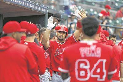 The Los Angeles Angels' Albert Pujols is congratulated the dugout after hitting a solo home run Thursday against the Tigers in Detroit. The home run was his 2,000th career RBI.