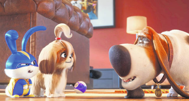 """This image released by Universal Pictures shows, from left, Snowball, voiced by Kevin Hart, Daisy, voiced by Tiffany Haddish and Pops, voiced by Dana Carvey in a scene from """"The Secret Life of Pets 2."""""""