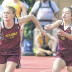 State track and field: Kalida's Verhoff has record run in winning 200