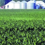 Farmers get help to offset tariff effects