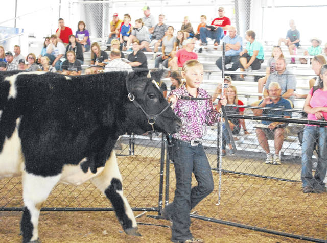 Brianna Egbert, a member of the Freyburg Happy Farmers 4-H Club, kicked off the annual junior fair livestock sale at the Auglaize County Fair on Friday morning, bringing her grand champion beef steer into the ring. A few minutes later Egbert walked out of the ring a happy young lady after her steer sold for $8,050.
