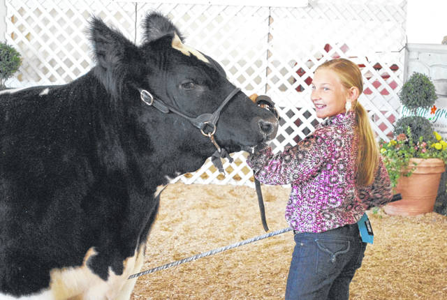 Brianna Egbert, a member of the Freyburg Happy Farmers 4-H Club, kicked off the annual junior fair livestock sale at the Auglaize County Fair on Friday morning, bringing her grand champion beef steer into the ring. A few minutes later Egbert walked out of the ring a happy young lady after her steer sold for $8,050. Brianna Egbert, a member of the Freyburg Happy Farmers 4-H Club, kicked off the annual junior fair livestock sale at the Auglaize County Fair on Friday morning, bringing her grand champion beef steer into the ring. A few minutes later Egbert walked out of the ring a happy young lady after her steer sold for $8,050.