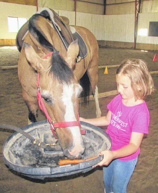 Evelyn Tussing, 5, who has Cystic Fibrosis, feeds a horse named Cysco at Challenged Champions Equestrian Center in Ottawa.