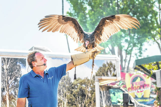 Joe Krathwohl educates a crowd on large birds with this helper, named Vladamir, at a past event.