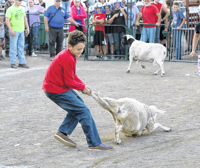 Fort Jennings' Owen Conley, 11, isn't about to let go during the Allen County Fair Livestock Scramble Saturday evening. Richard Parrish | The Lima News