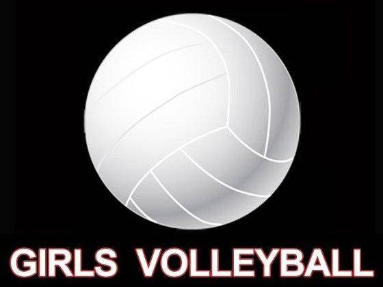 Lima area high school volleyball capsules - The Lima News