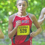 Cross country: Van Wert's Phillips triumphs at Ottawa-Glandorf Blue/Gold Invitational
