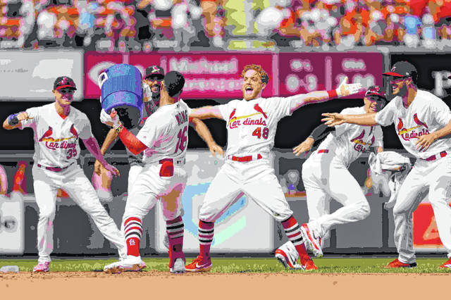 St. Louis Cardinals' Harrison Bader (48) celebrates as he prepares to be doused by teammate Kolten Wong (16) after a hitting a walk-off single to defeat the Cincinnati Reds 4-3 in the first baseball game of a doubleheader Sunday, Sept. 1, 2019, in St. Louis. (AP Photo/Jeff Roberson)