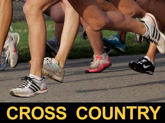 Cross country roundup: Columbus Grove, Minster dominate district