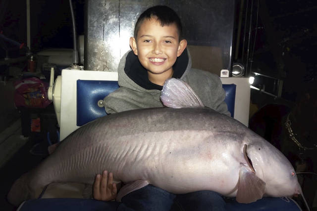 In this photo taken Nov. 10, 2019, Alex Flores, 9, holds a 42-pound (19-kilogram) blue catfish he caught while fishing in the New Mexico's Elephant Butte Reservoir. His father, Kris Flores says the fourth-grader named the fish Wailord after the Pokemon character, and then he released the fish back into the reservoir after taking some photos and videos. (Kris Flores via AP)