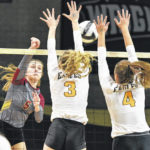 New Bremen advances to state championship in Division IV volleyball