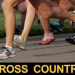 Cross country: Minster girls win fourth straight state title