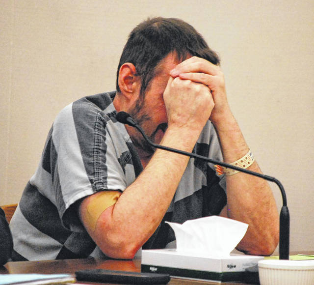 Dale Agnew sobbed frequently during his sentencing hearing Friday in Allen County Common Pleas Court. The Waynesfield man was sentenced to 22 years in prison on charges of kidnapping and aggravated burglary.