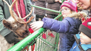 Santa, reindeer come to Lima