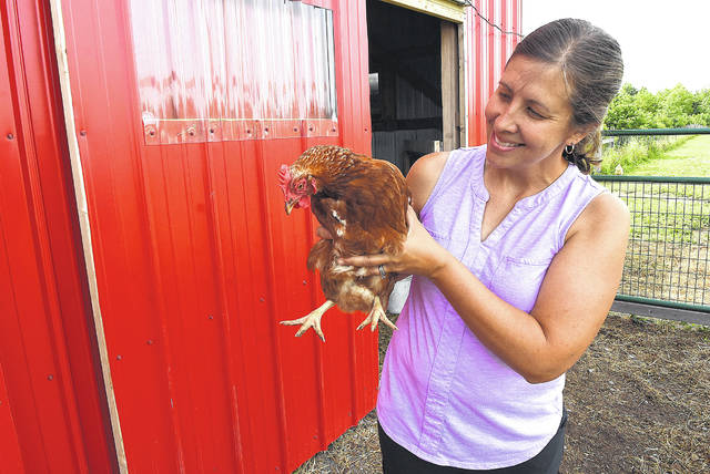 Amanda Wischmeyer, of Little Riley Creek Farm, holds a laying hen near the barn at the farm near Bluffton. The birds strut around the yard pecking at bugs as free-range animals. Outside of eggs, Wischmeyer uses their manure to add nutrients to the soil, and the family slaughters one on occasion.