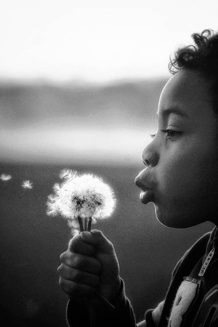 """First place Candid Kids By Jodi Anderson, of New Bremen, """"Blowing Wishes"""""""