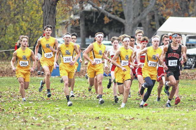 Runners head out during Saturday's Division II district boys race at Ottawa Park. See more district photos at LimaScores.com.