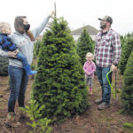 Many turn to real Christmas trees