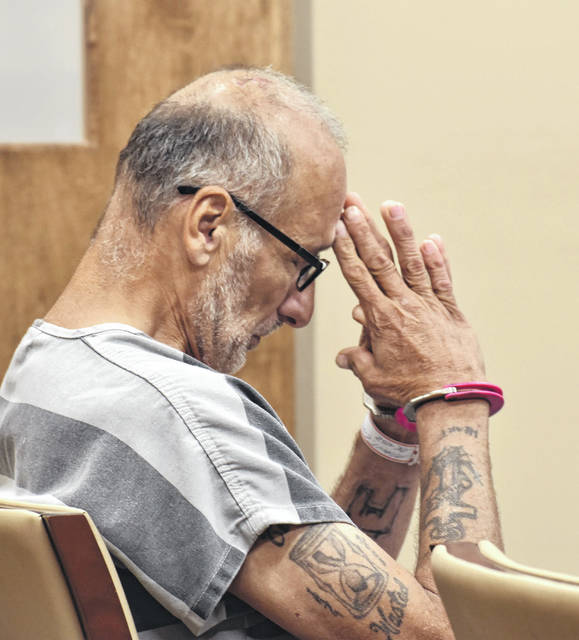 Elmer Mault, listed in court documents as homeless, was sentenced Monday to 18 months in prison for starting a fire earlier this year at the National Overstock Liquidation of Ohio facilities on Findlay Road.