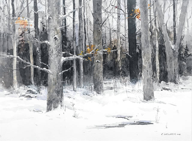 The Ohio Watercolor Society Exhibit at Wassenberg Art Center will continue through mid February.