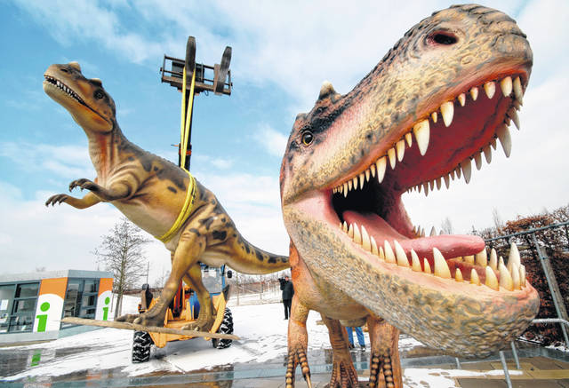 Life-sized Tyrannosaurus rex models are unloaded for a dinosaur exhibition March 7, 2006, in Potsdam, Germany. A study released on April 15 calculates that 2.5 billion Tyrannosaurus rex prowled North America over a couple million years or so, with maybe 20,000 at any given time.