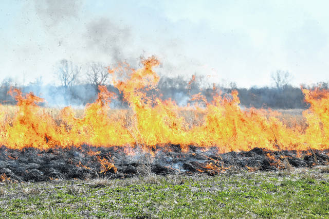 The Ohio State University at Lima held a prescribed burn Sunday as part of the regular maintenance of its 19-acre prairie plot at the southeast corner of Mumaugh and Reservoir Roads.