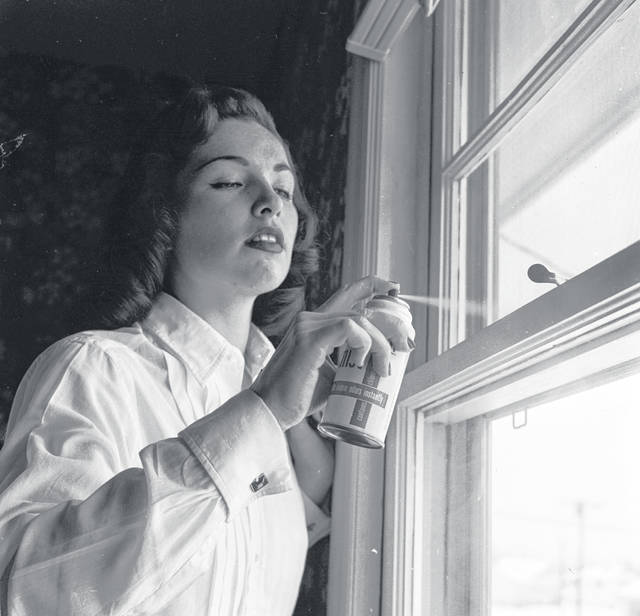 circa 1955: A woman sprays a DDT aerosol on a domestic window frame to keep insects at bay.