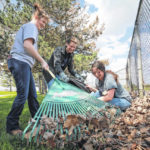 Photo: Allen East students rake in the experience