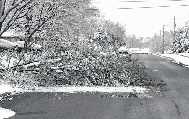 The weight of Wednesday's wet April snow knocked a tree limb across a section of Gloria Avenue in Lima.