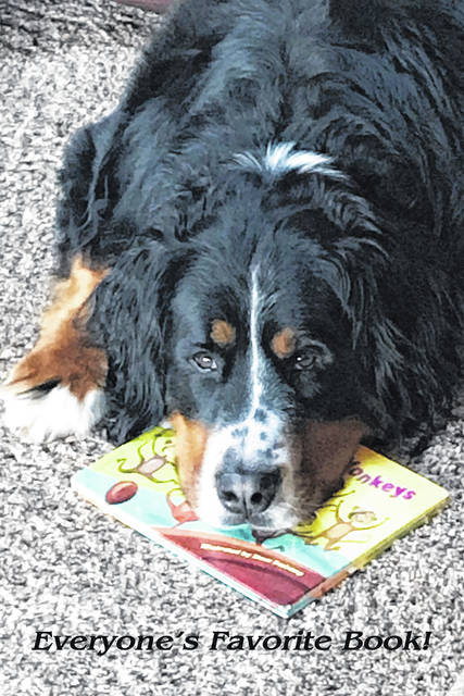 Kathy Kalipski, of Reynoldsburg, says that she has six grandchildren and this is their favorite book. Murphy, a 2-and-a-half-year-old Bernese Mountain dog, has decided it's his favorite book, too.
