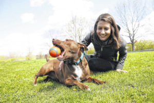 Want to teach your dog to talk?