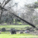 Storm aftermath: What to do if your power goes out