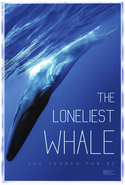 """""""The Loneliest Whale: The Search for 52."""""""