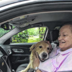Top 10 dog-friendly cars include some not-so-obvious choices