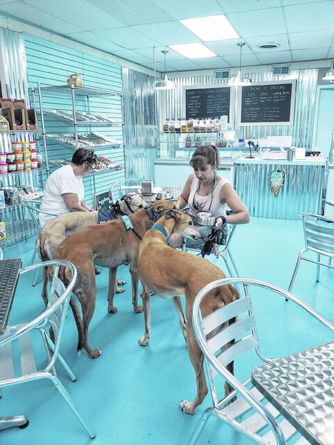 Dogs can enjoy an ice cream parlor just for them while experiencing southern Delaware's Culinary Coast.