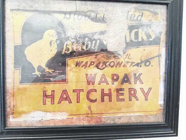 The Wiremans found artifacts from the building's past as a hatchery.
