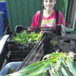 Antioch Farm: A diversity of crops and education