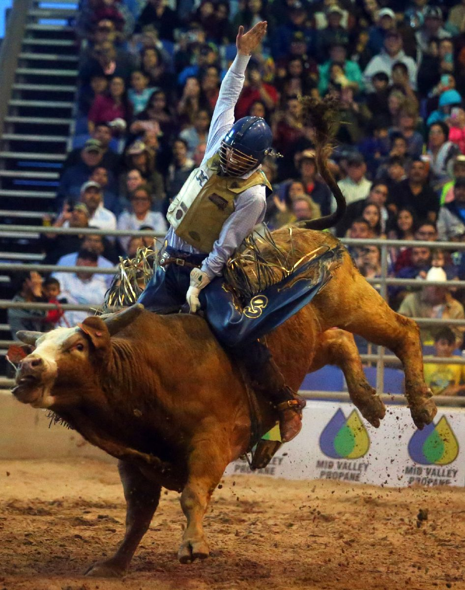 Eight Buck Wild Seconds Professional Cowboys Compete In