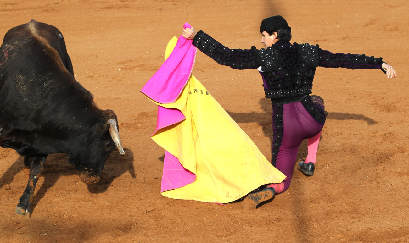 Photo Gallery: Bloodless bullfights in La Gloria - The Monitor